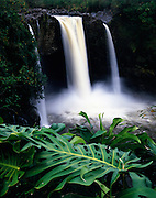 Rainbow Falls, Hilo, Island of Hawaii