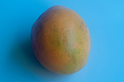 whole Fresh ripe mango on blue background