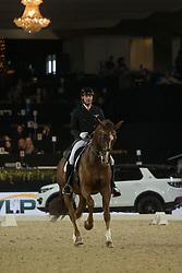 Van der Meer Patrick, NED, Zippo<br /> Jumping Mechelen 2017<br /> © Sharon Vandeput<br /> 27/12/17