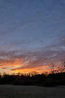 Autumn Backyard Sunrise Panorama. Five of nine images taken with a Leica CL camera and 18 mm f/2.8 lens (ISO 200, 18 mm, f/11, 1/60 sec). Raw images processed with Capture One Pro and the composite created using AutoPano Giga Pro.