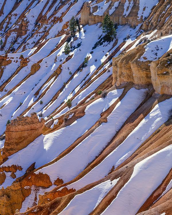 Graphic winter pattern, Bryce Canyon National Park, Utah, USA
