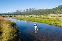 Amy McCormick fly fishing the West Fork of the Carson River in Hope Valley. Lake Tahoe, CA