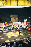 Muay Thai boxing at Ratchadamnoen Stadioum. Bangkok, Thai;and.