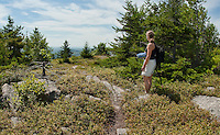 Hiking up Piper Mountain to pick blueberries and enjoy the view August 18, 2011.
