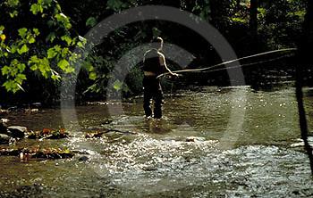 Outdoor recreation, Fishing