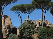 Italy, Rome, Palatino, Palatine hill