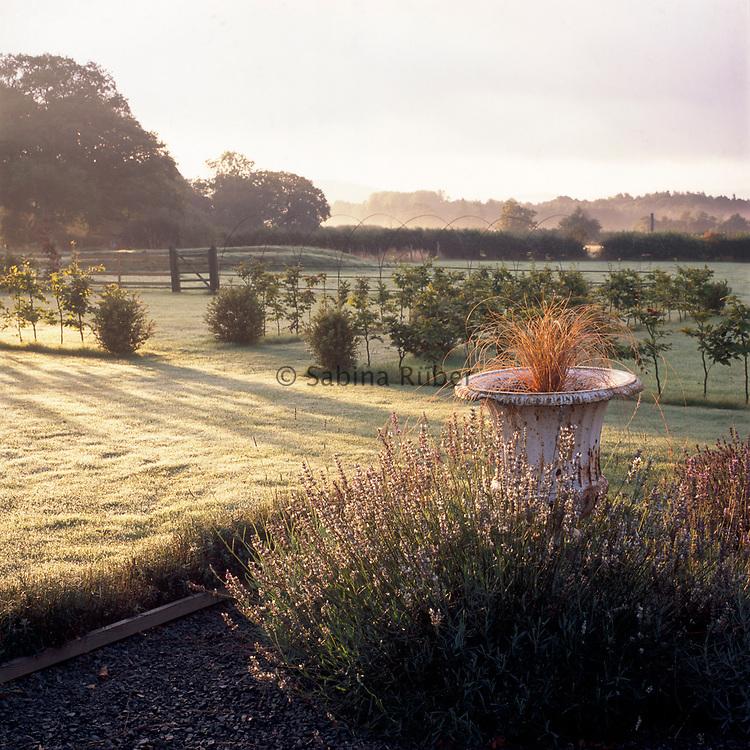 Whimble Gardens & Nursery, Powys, Wales
