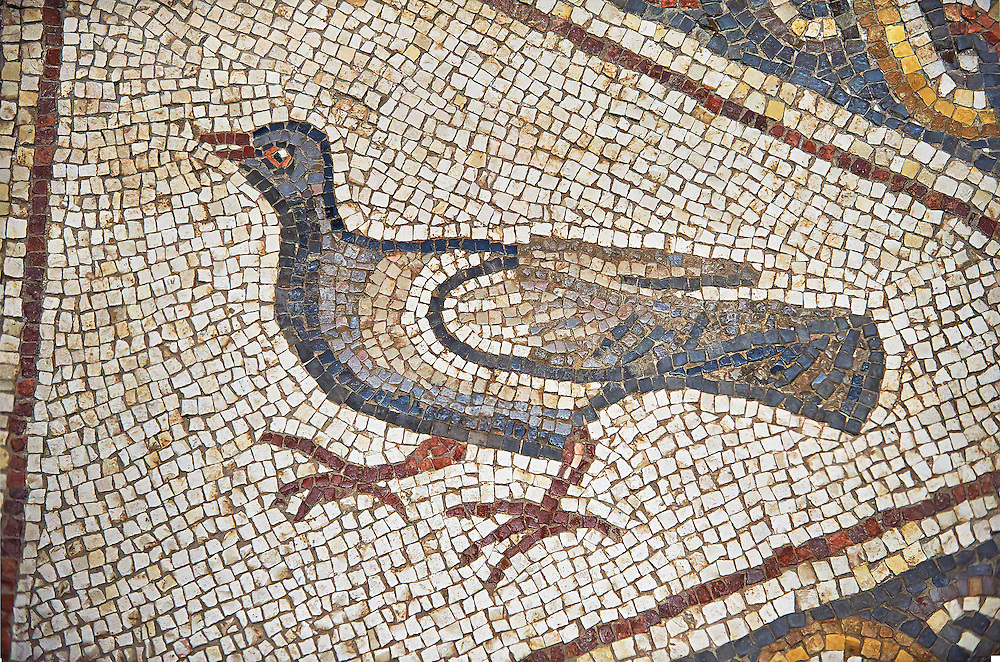 A bird from the 3rd century Roman mosaic villa floor from Lod, near Tel Aviv, Israel. The Roman floor mosaic of Lod is the largest and best preserved mosaic floor from the levant region along the eastern Mediterranean coast. It is unclear whether the owners were Jewish, Christian or pagan but either way they would have been wealthy to own such a magnificent floor. The Shelby White and Leon Levy Lod Mosaic Centre, Lod, Israel. .<br /> <br /> If you prefer to buy from our ALAMY STOCK LIBRARY page at https://www.alamy.com/portfolio/paul-williams-funkystock/roman-mosaic.htmll . Type -    lod  - into LOWER SEARCH WITHIN GALLERY box - Refine search by adding a subject, place, background colour, museum etc.<br /> <br /> Visit our ROMAN WORLD PHOTO COLLECTIONS for more photos to download or buy as wall art prints https://funkystock.photoshelter.com/gallery-collection/The-Romans-Art-Artefacts-Antiquities-Historic-Sites-Pictures-Images/C0000r2uLJJo9_s0