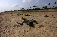 Mannar , Sri Lanka , Fisherman , shot during clases with goverment forces in Mannar beach.