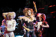CATS returns to Sydney, Australia-18th May 2010.Pics: Paul Lovelace . An instant sale option is available where a price can be agreed on image useage size. Please contact me if this option is preferred.