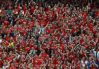 Wales supporters celebrating. esultanza tifosi<br /> Lille 01-07-2016 Stade Pierre Mauroy Football Euro2016 Wales - Belgium / Galles - Belgio <br /> Quarter-finals. Foto Matteo Ciambelli / Insidefoto