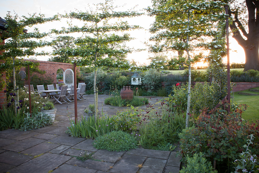East-Terrace with pleached Crataegus,  Manor Farm, Cheshire