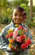 Smiling girl age 9 holding bouquet of autumn zinnia flowers.  St Paul  Minnesota USA
