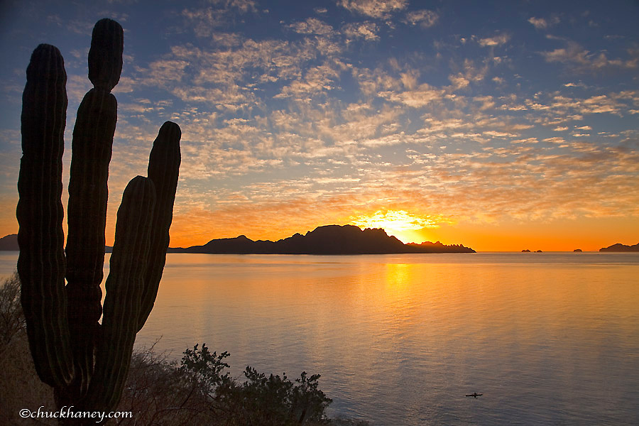 Sea kayaker on the Gulf of California at sunrise near Loreto Mexico