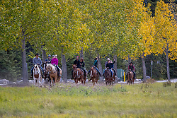 Trail Riding, Banff, Warner Stables<br /> CSIO 5* Spruce Meadows Masters - Calgary 2016<br /> © Hippo Foto - Dirk Caremans<br /> 09/09/16