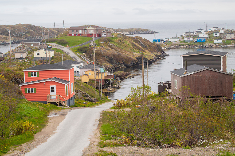 Colourful houses overlooking inner harbour of Rose Blanche,, Rose Blanche, Newfoundland and Labrador NL, Canada