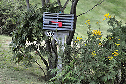 Lobster Pot Mailbox. Potts Point, South Harpswell, ME