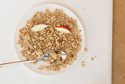 Cereal food with slices of apple and spoon in plate, Freiburg im Breisgau, Baden-Wuerttemberg, Germany