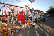 A memorial was created at Mesa Verde Elementary School where student, Christina Taylor Green, 9, was a student.  Green was killed during an assassination attempt on Arizona Congresswoman, Gabrielle Giffords, in Tucson, Arizona, USA, on January 8, 2011.