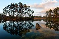 Sunrise at Lone Pilne Key in Florida Everglades