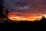 A fiery orange sunset glows over fir trees and Puget Sound, and Olympic Mountains, Seattle, Washington.