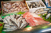 Close up of fresh fish Barrio Macerana market, Seville, Spain