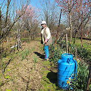 TIMISOARA, ROMANIA - APRIL 21:  A woman who lives in the outskirt of the shows her field on April 21, 2013 in Timisoara, Romania.  Romania has abandoned a target deadline of 2015 to switch to the single European currency and will now submit to the European Commission a programme on progress towards the adoption of the Euro, which for the first time will not have a target date. (Photo by Marco Secchi/Getty Images)