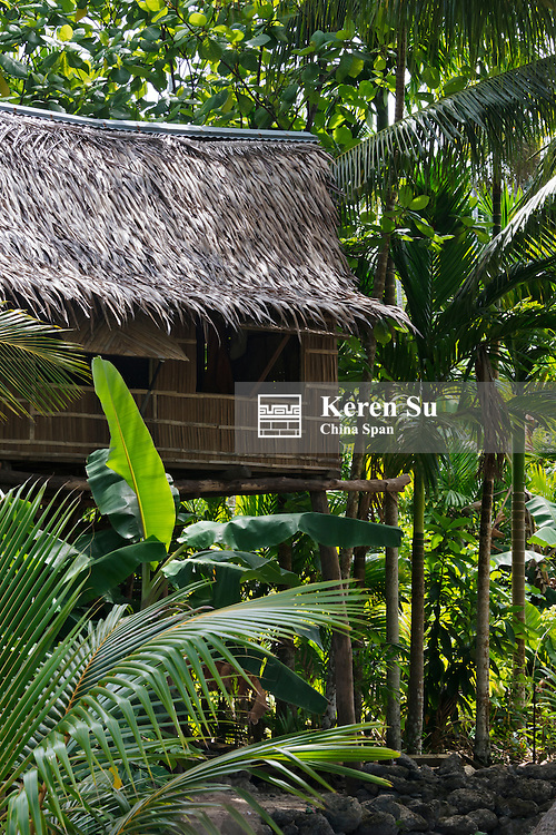 Local house in the forest, Yap Island, Federated States of Micronesia