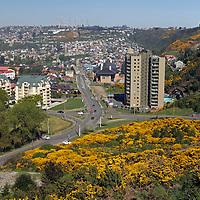 South America, Chile, Puerto Varas overlook.