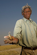 Kalahari Bushman named Cobra (Soaque Tribe) with Scorpion<br /> Makgadikgadi Pans, Kalahari Desert<br /> Northeast BOTSWANA<br /> HABITAT & RANGE: