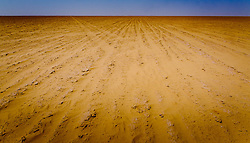 The dry lake bed of Ouid Draa near the Algerian border in the south of Morocco<br /> <br /> (c) Andrew Wilson | Edinburgh Elite media