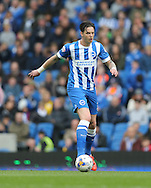 Greg Halford during the Sky Bet Championship match between Brighton and Hove Albion and Watford at the American Express Community Stadium, Brighton and Hove, England on 25 April 2015.