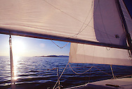 sails and water and sun