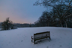 The early morning sky in soft, pastel colours contrasts with trees on Hampstead Heath as dawn breaks in London. Hampstead, London, February 01 2019.
