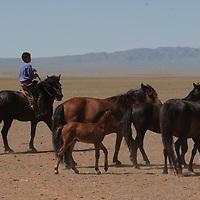 Gobi Desert, Mongolia.