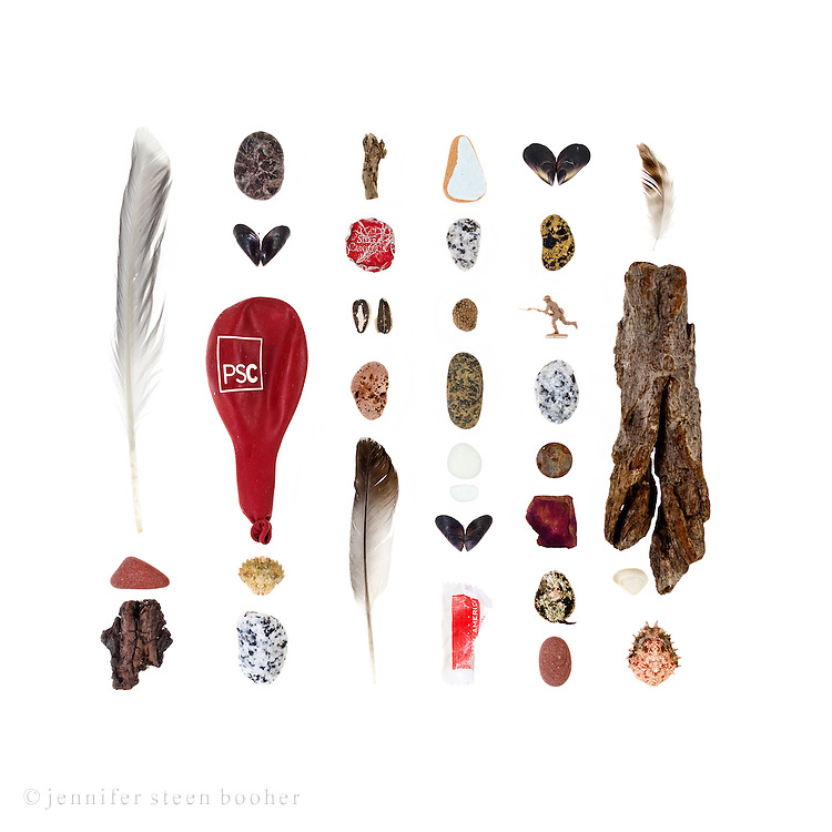 Seabird feathers, brick, driftwood, granite beach stones, mussel shells (prob. Mytilus galloprovincialis), balloon, European Green Crab (Carcinus maenas), bottle cap, sunflower seeds, pottery, sea glass, sugar packet, plastic army man, Euro penny, rose petal, limpet with Coralline and seaweed, clam shell, Toad or Lyre crab (prob. Hyas species)