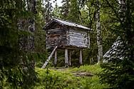 VILDMARKSVÄGEN JULI 2020<br /> Förr lagrade samerna sina matvaror i den här typen av byggnader för att rädda dessa från råttor och andra djur. Byggnaden kallas Stolpbod och stolparna är placerade en bit från hörnen för att försvåra för djuren att ta sig in och frossa.<br /> Foto: Per Danielsson/Projekt.P