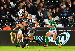 Dan Evans of Ospreys takes the high ball<br /> <br /> Photographer Craig Thomas/Replay Images<br /> <br /> Guinness PRO14 Round 4 - Ospreys v Benetton Treviso - Saturday 22nd September 2018 - Liberty Stadium - Swansea<br /> <br /> World Copyright © Replay Images . All rights reserved. info@replayimages.co.uk - http://replayimages.co.uk