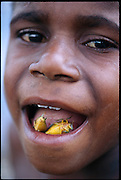 Martinus Himan, a Dani child with a mouthful of roasted stink bugs, Soroba Village, Baliem Valley, Irian Jaya, Indonesia. (Man Eating Bugs: The Art and Science of Eating Insects)