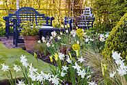 Higher Lane Garden - April