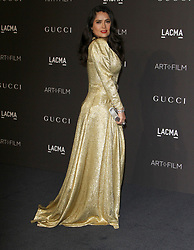2018 LACMA ART+FILM GALA at LACMA in Los Angeles, California on 11/3/18. 03 Nov 2018 Pictured: Salma Hayek. Photo credit: River / MEGA TheMegaAgency.com +1 888 505 6342