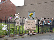 Thank you NHS sign and childrens cuddly toys hanging on a fence along a roadside during the coronavirus pandemic on 8th July 2020 in the village of Blackhall Colliery in County Durham, United Kingdom. This show of appreciation is a way of uniting a country doing battle with coronavirus.