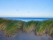 Strand zee en duinen, Zuiderstrand, Den Haag - Sand sea and dunes, The Hague, Netherlands