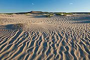 Ripples marks in the Killpecker Sand Dunes
