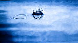 Water Drop Art by Jeff Gatesman ©2013 Gatesman.com