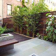 Modern Garden design in Brooklyn