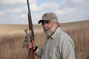 Shotgun at the ready, hunter John Davidson assess the land while upland game bird hunting near Minot, North Dakota, United States. Hunters work the land to find pheasant. These men have been shooting for most of their lives and put considerable efforts into their hunting, efforts which reward them with wild game meats, none of which is wasted.