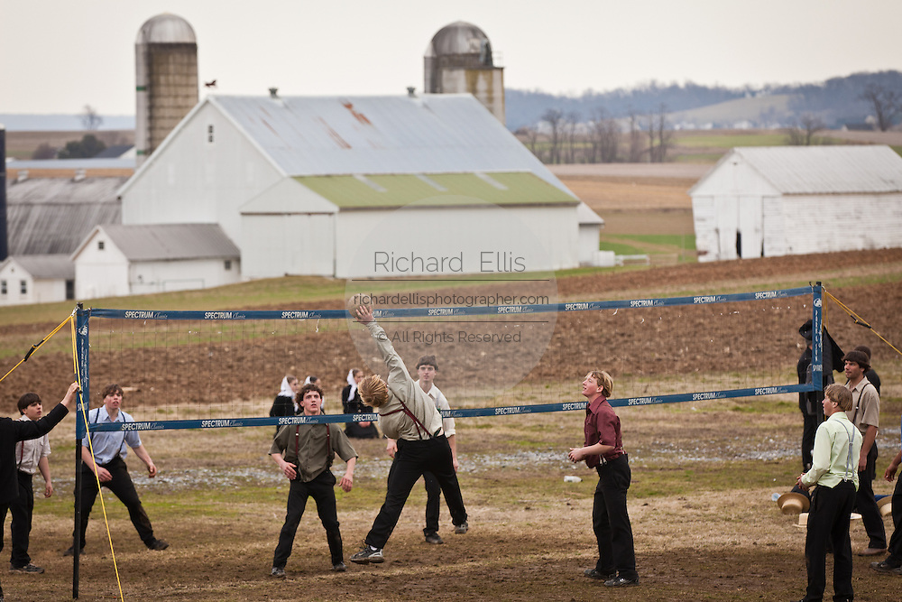 Amish boys play volley in a farm field during the Annual Mud Sale to support the Fire Department  in Gordonville, PA.