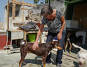 Nora García with some of her rescued dogs on the patio area of Aniplant, Cuba.