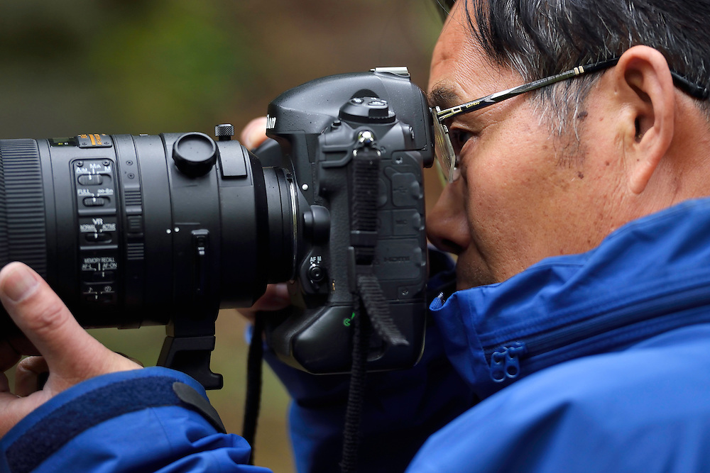 Award-winning Photographer and Professor Sun Jinqiang, Tangjiahe National Nature Reserve, NNR, Qingchuan County, Sichuan province, China